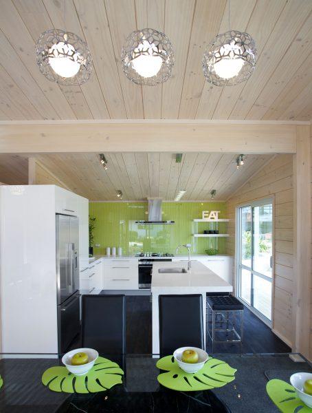 Te Rakau Home Design image 4